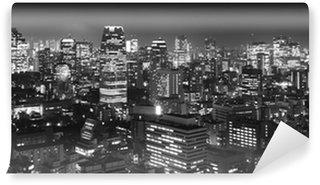 Vinylová Fototapeta Tokio na panorama noc, b & w