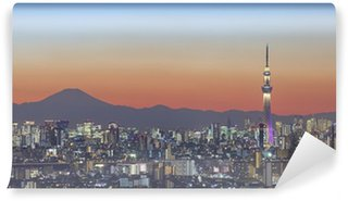 Vinylová Fototapeta Tokio výhled na město a tokyo skytree s Mt Fuji