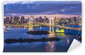 Vinylová Fototapeta Tokyo Bay Japonsko