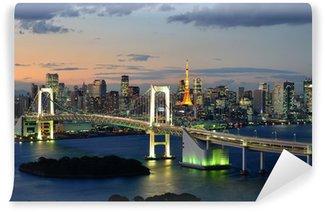 Vinylová Fototapeta Tokyo Bay