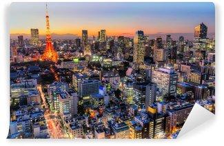 Vinylová Fototapeta Tokyo, Japan