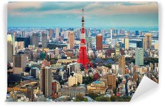 Vinylová Fototapeta Tokyo pohled město vidět na obzoru