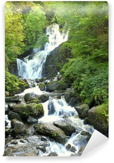 Vinylová Fototapeta Torc Waterfall