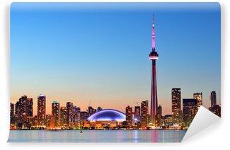 Vinylová Fototapeta Toronto panorama