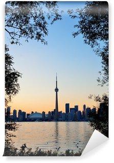 Vinylová Fototapeta Toronto slunce