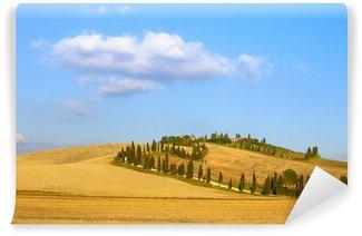 Fototapeta Vinylowa Toskania, Kreta Senesi pole, drzewa cyprysowego i pola. Włochy.