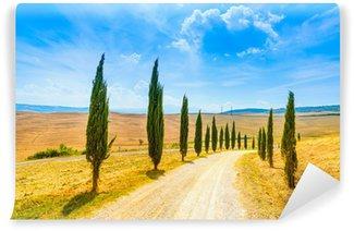 Vinylová Fototapeta Toskánsko, Cypress Trees bílá cesta venkovské krajiny, Itálie, Evropa