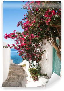 Vinylová Fototapeta Tradiční řecký alej na ostrově Sifnos, Řecko