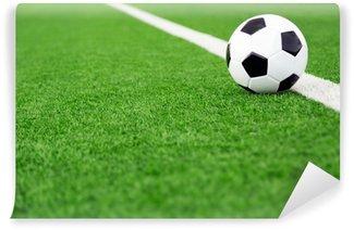 Fototapeta Vinylowa Tradycyjna piłka na boisku piłkarskim