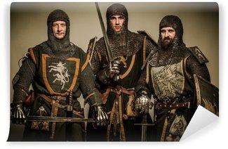 Vinylová Fototapeta Tři středověkých rytířů