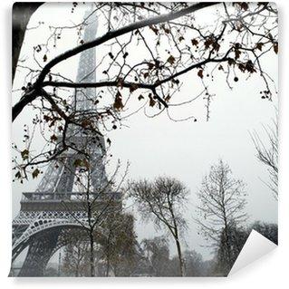 Vinylová Fototapeta Trocadero France Paris pod sněhem