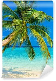 Vinylová Fototapeta Tropical Beach