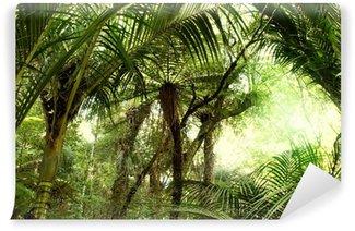 Vinylová Fototapeta Tropické džungle