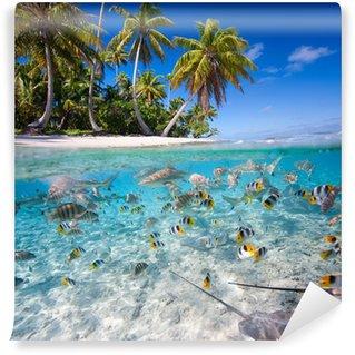 Vinylová Fototapeta Tropický ostrov