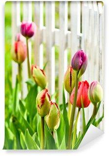 Vinylová Fototapeta Tulipány v zahradě