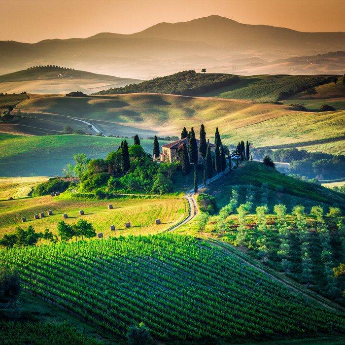 Fototapeta Vinylowa Tuscan country - Tematy