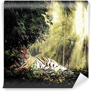 Fototapeta Vinylowa Tygrys
