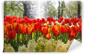 Vinylová Fototapeta Uspořádání tulipánů a hyacintů s vodní fontánou