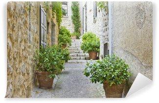 Vinylová Fototapeta Úzké ulice v Provence