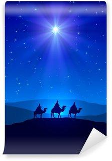 Vinylová Fototapeta Vánoční hvězda na modré obloze a tři mudrci