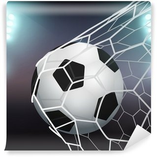 Vinylová Fototapeta Vector fotbalový míč v brance na stadionu se světlem