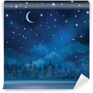 Vinylová Fototapeta Vektor noční zimní scény, nebe a lesní pozadí.