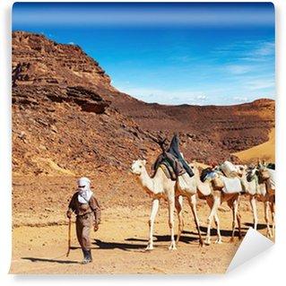Vinylová Fototapeta Velbloudi karavany v saharské poušti, Alžírsko