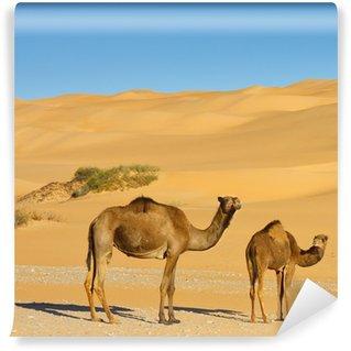 Vinylová Fototapeta Velbloudy v poušti - Awbari Sand Sea, Sahara, Libye