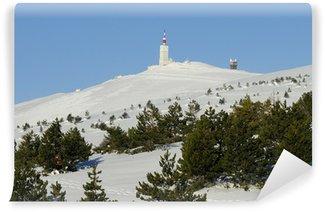 Fototapeta Winylowa Ventoux Winter