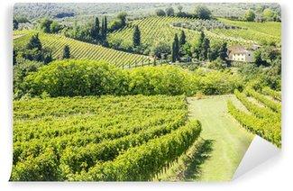 Vinylová Fototapeta Víno Hill Itálie