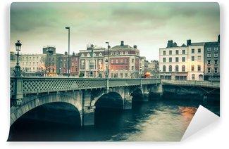 Vinylová Fototapeta Vintage styl pohled na Dublin Irsko Grattan mostu