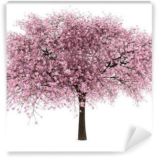 Vinylová Fototapeta Višeň strom na bílém pozadí