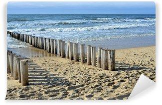 Vinylová Fototapeta Vlnolamy na pláži u Severního moře v Domburg Holandsku