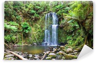 Vinylová Fototapeta Vodopád Tasmánie