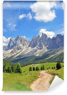 Vinylová Fototapeta Vrcholky hor v Alpách