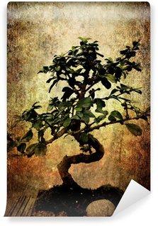 Vinylová Fototapeta Výstřední bonsai