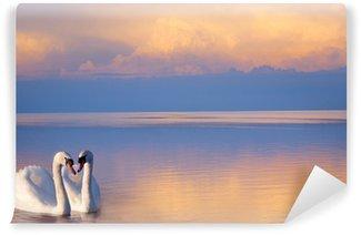 Vinylová Fototapeta Výtvarné překrásná Dva bílé labutě na jezeře