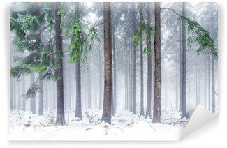 Vinylová Fototapeta Wald im Winter