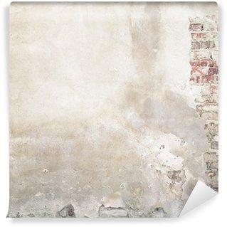 Vinylová Fototapeta Wall texture