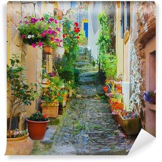 Fototapeta Winylowa Wąskie i kolorowe ulicy we wsi w Prowansji