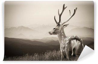 Vinylová Fototapeta Whitetail