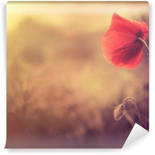 Fototapeta Winylowa Wild Flower Poppy