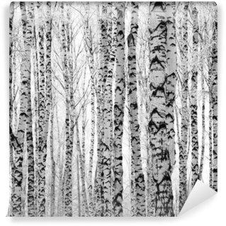 Vinylová Fototapeta Winter kufry břízy
