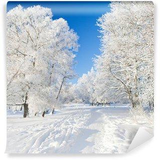 Vinylová Fototapeta Winter Park ve sněhu