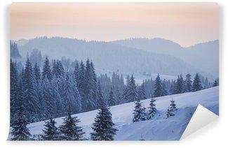 Fototapeta Winylowa Winter`s opowieść