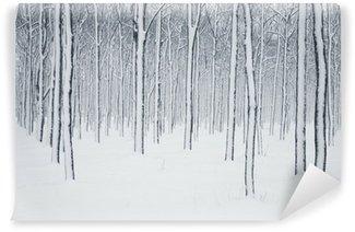 Fototapeta Winylowa Winter scene