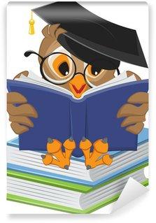Fototapeta Winylowa Wise owl czytanie książki