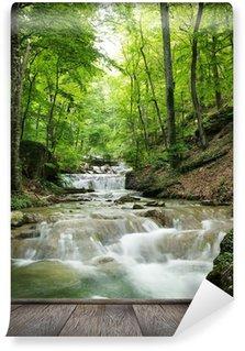 Fototapeta Winylowa Wodospad las