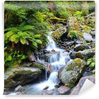 Fototapeta Winylowa Wodospad w bujnym lesie deszczowym