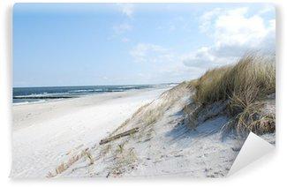 Fototapeta Winylowa Wydma plaży
